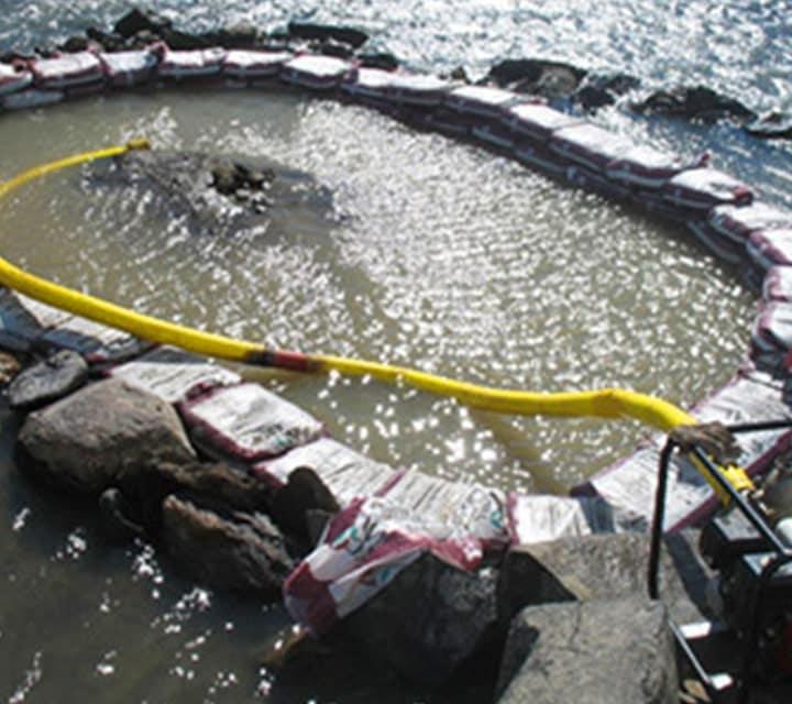 Excavation of the Plesiosaur underwater