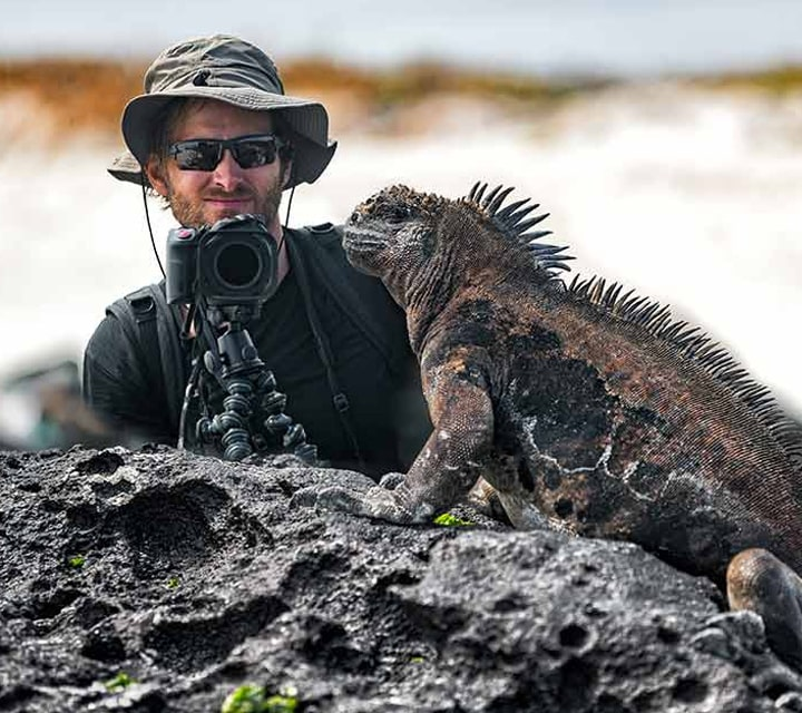 Galapagos weather makes for perfect lighting for photography to take a photo of a marine iguana