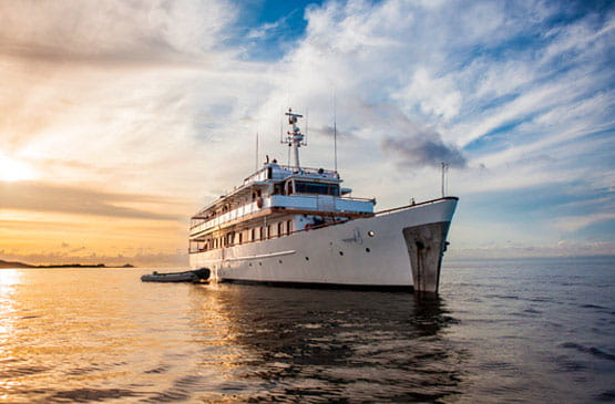 M/Y Grace Yacht Reviews
