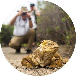 Hiking & Walking Galapagos Islands