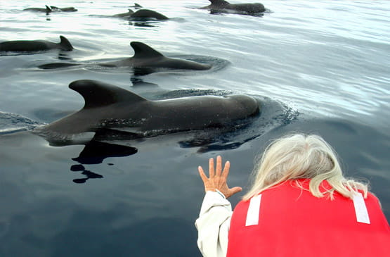 Galapagos Cruise Specials