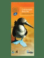 Galapagos Birds Life