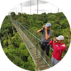 Ecuador Birdwatching