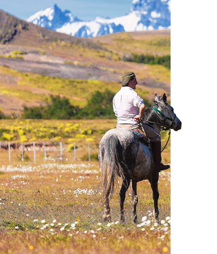 Gaucho taking in a moment while horseback riding in Patagonia