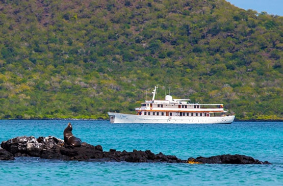 Best Galapagos Cruise