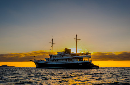 Galapagos Evolution Cruise Specials