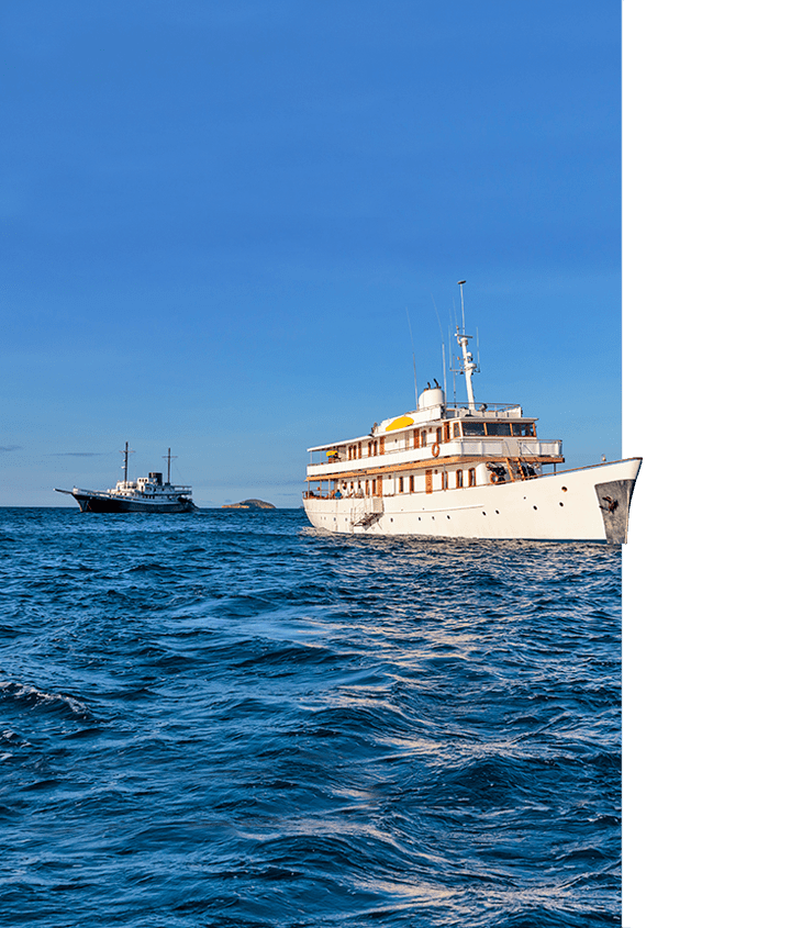 Award winning Galapagos yachts, M/Y Grace (in the forefront) and M/V Evolution (in the background)