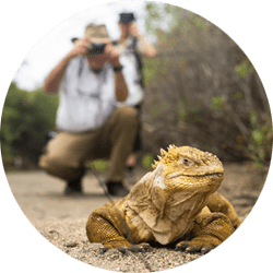 Galapagos Walks & Hikes