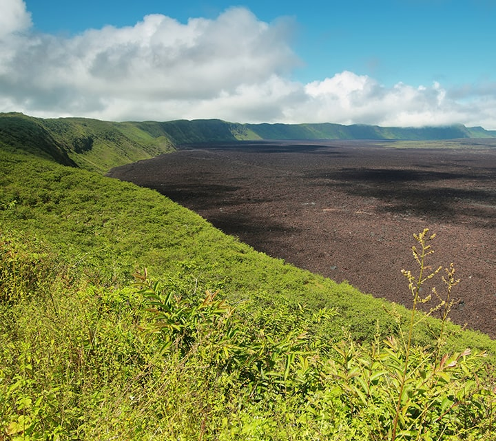 Sierra Negra Volcano Crater surrounded in lush hills, Galapagos Islands