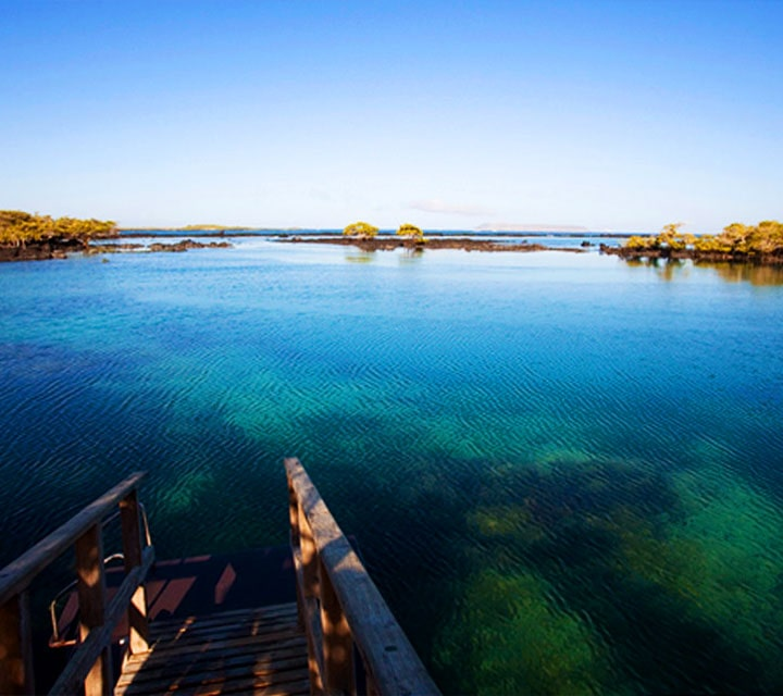 Best time to go to Galapagos Islands for nice weather, sun, and swimming.