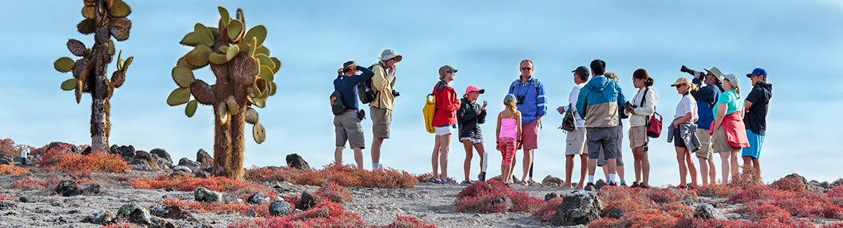 Guided Walks & Hikes on Family Cruises
