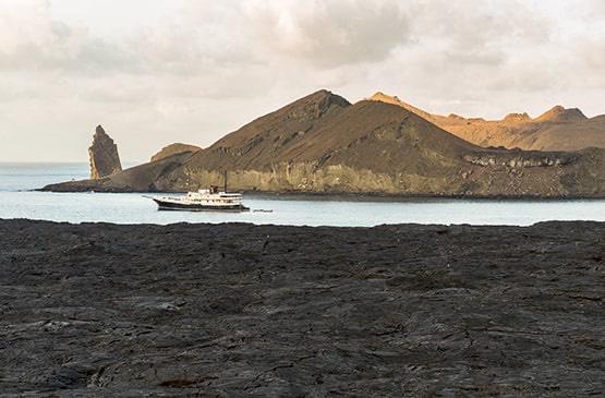 Galapagos Cruise Specials 2020-2021