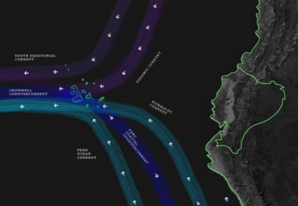 Galapagos Islands Humboldt Current