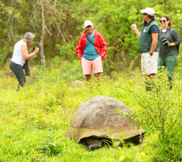 Galapagos Naturalist Guide educating guests about Giant Tortoises in the Galapagos