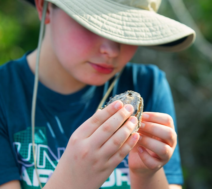 A boy wearing a sun protective hat holding and observing a piece of debris or mammal bone